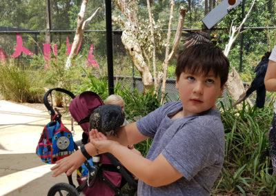 Feeding a black cockatoo
