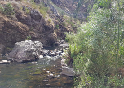 Grampians river down stream