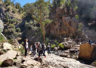 Mackenzie's Falls rocks
