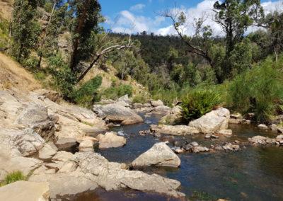 Stream at Mackenzie falls