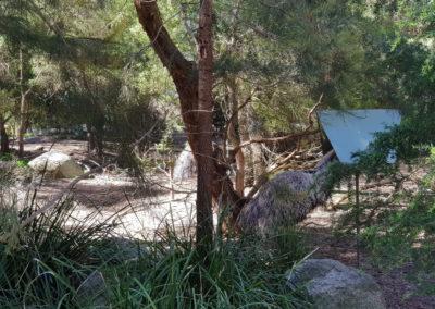 the walk Healesville wildlife sanctuary