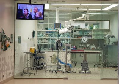 Emergency at animal hospital