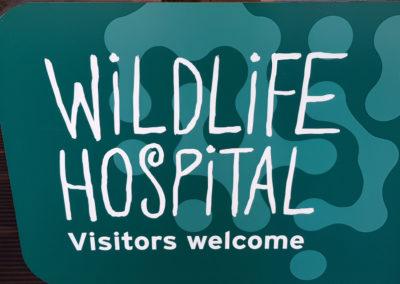 Wildlife hospital Visitors welcome