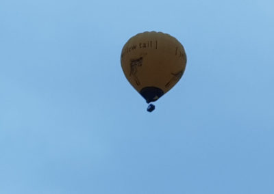 Hot Air Balloon Melbourne Victoria Australia