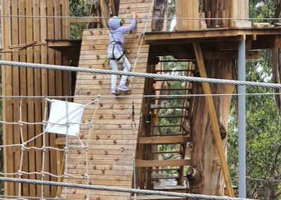 Climbing wall Livewire Lorne