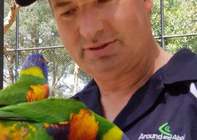 Feeding lorikeets at Heaville wildlife sanctuary