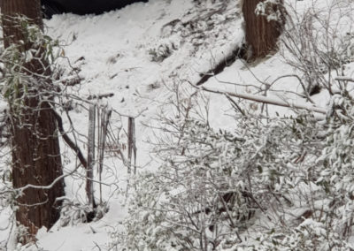 Car rolled over on Mt Buller summit road