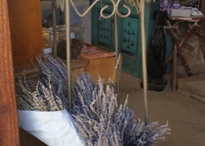 Lavender at Lavandula Farm