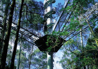Spiral tower at the Otway Fly treetop walk