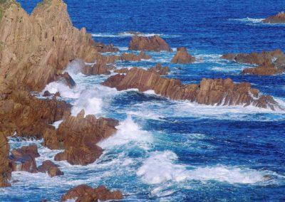 Nobbies at Phillip Island
