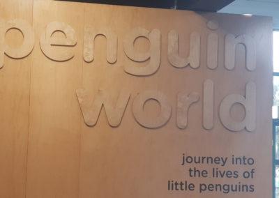 Penguin world Phillip Island