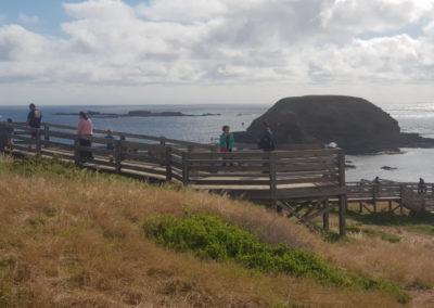 Nobbies Lookout Phillip Island