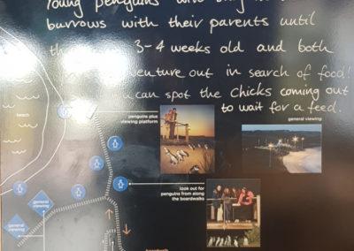 Penguin information board at Phillip Island