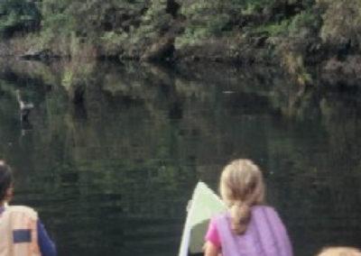 Lake Elizabeth forest