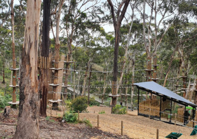 Live wire Park at Lorne