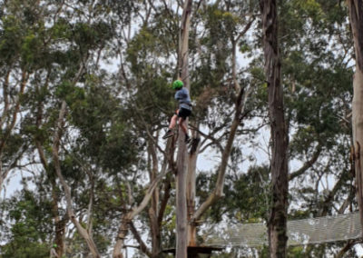 Ziplining at Live Wire Park