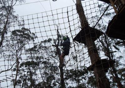Net at Livewire park