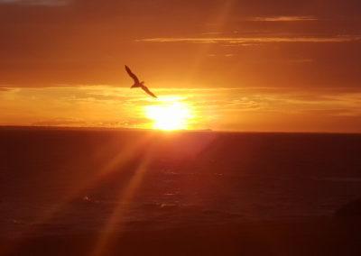 Morning sunrise at Torquay
