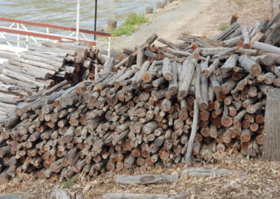 Firewood for paddle steamers at Echuca