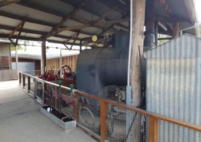 steam engine Echuca