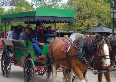 Horse and carriage ride in Historical Echuca