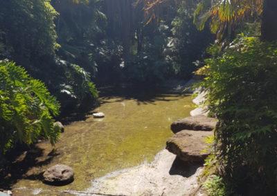 Bendigo gardens