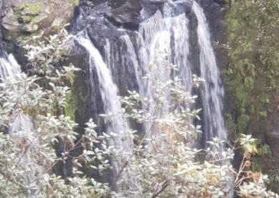 Hopetoun Falls from above