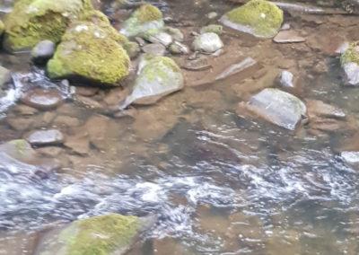 Hopetoun Falls stream