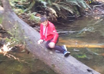 sitting on fallen Redwood tree