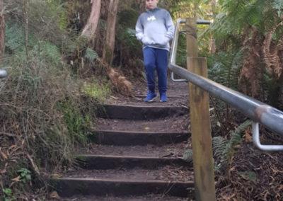 Steps down to Hopetoun Falls