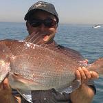 Bellarine Peninsula Queencliff fishing tour